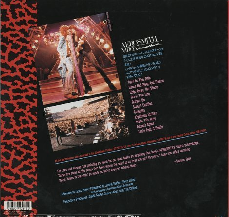 VIDEO SCRAPBOOK/AEROSMITH  画像