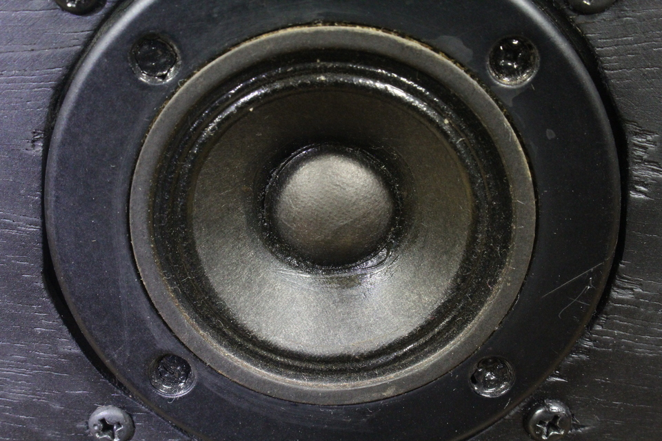 2S-305D DIATONE 画像