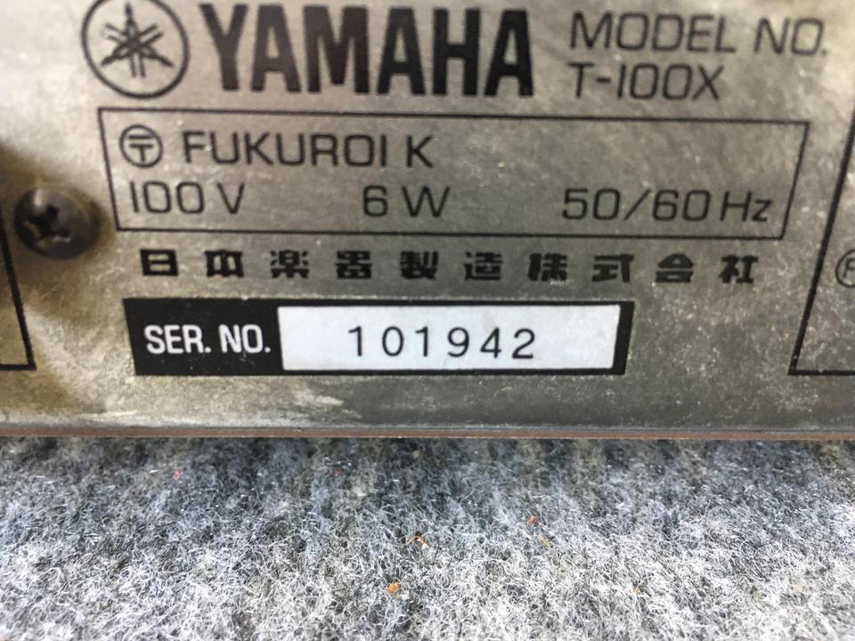 T-100X YAMAHA 画像