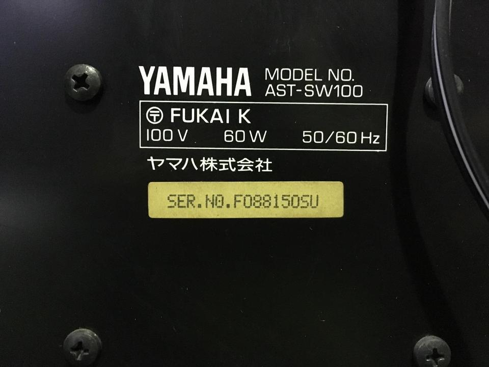 AST-SW100 YAMAHA 画像