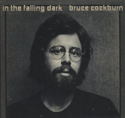 IN THE FALLING DARK/BRUCE COCKBURN BRUCE COCKBURN 画像