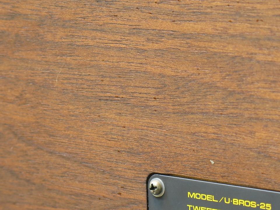 U-BROS-25 UESUGI 画像