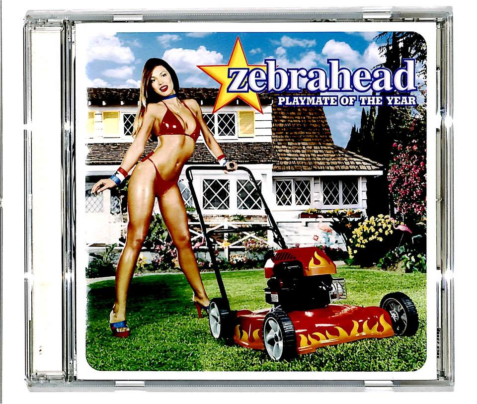 PLAYMATE OF THE YEAR/ZEBRAHEAD ZEBRAHEAD 画像