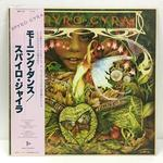 MORNING DANCE/SPYRO GYRA