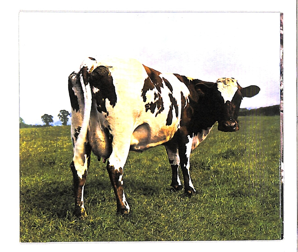 ATOM HEART MOTHER/PINK FLOYD PINK FLOYD 画像