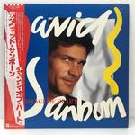 A CHANGE OF HEART/DAVID SANBORN