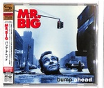 BUMP AHEAD/MR. BIG