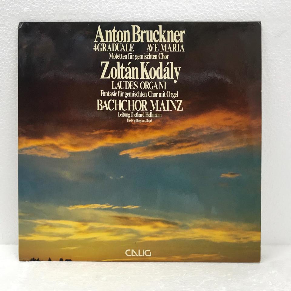 ブルックナー:昇階曲、アヴェ・マリア、他 ブルックナー/コダーイ 画像