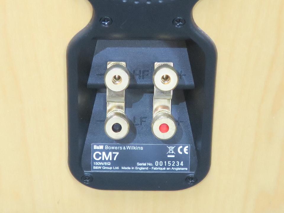 CM7 B&W 画像