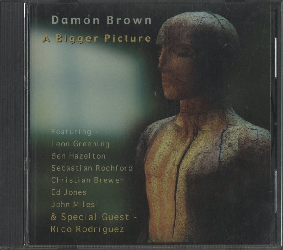 A BIGGER PICTURE/DAMON BROWN DAMON BROWN 画像