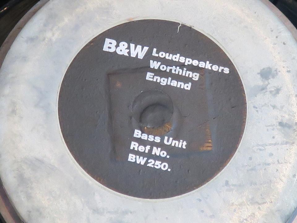 BW250 B&W 画像
