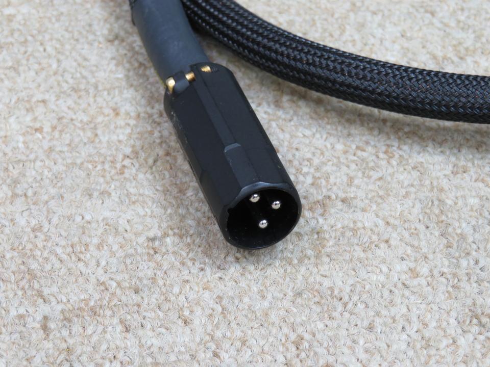 AES-1.0PA/1.0m Acoustic Revive 画像
