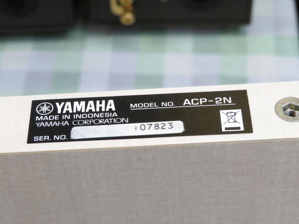 ACP-2N YAMAHA 画像