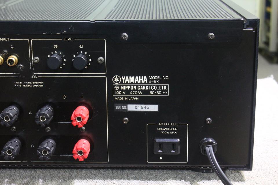 B-2X YAMAHA 画像