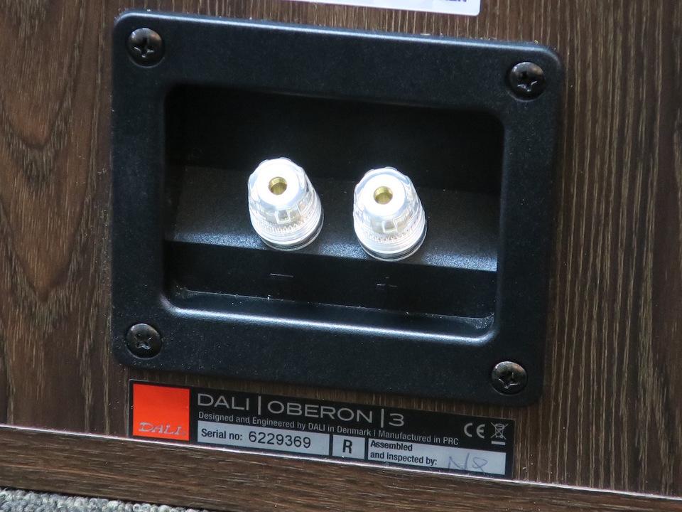 OBERON3 DALI 画像