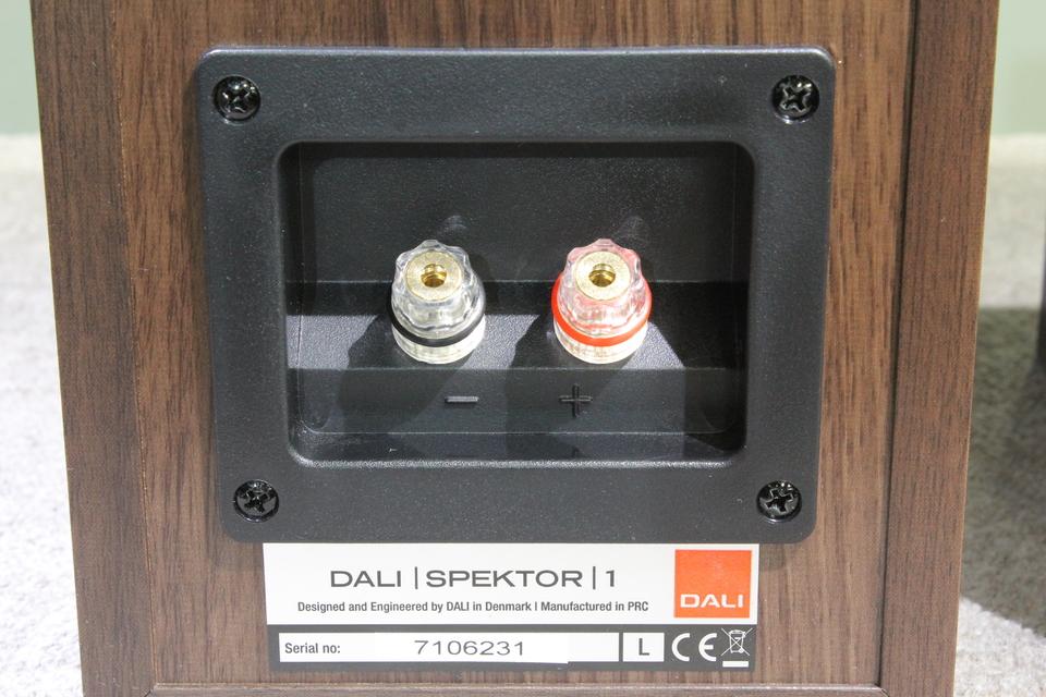 SPEKTOR1 DALI 画像