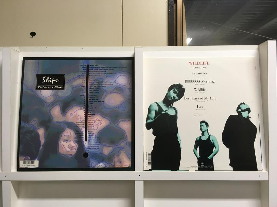 織田哲郎5枚セット  画像