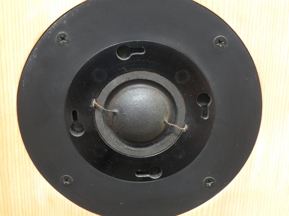 SX-3 Victor 画像