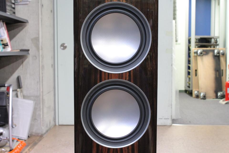 GOLD 200-5G PE Monitor Audio 画像