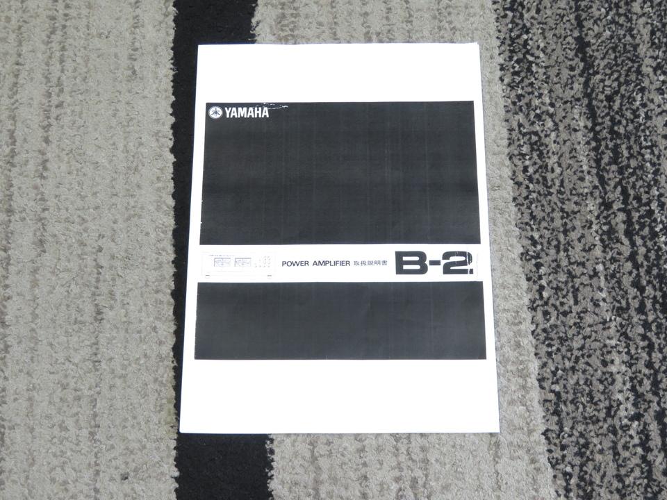B-2 YAMAHA 画像