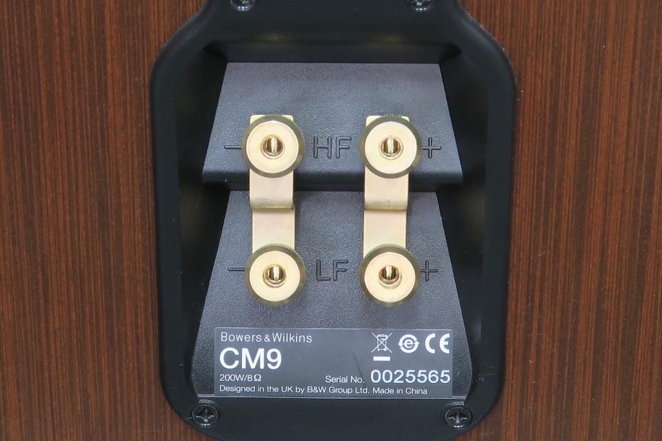 CM9 B&W 画像