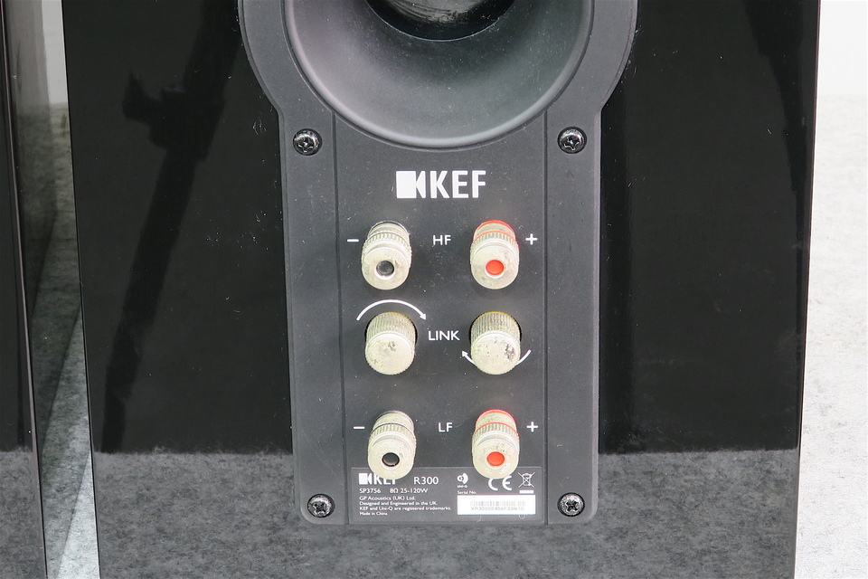 R300 KEF 画像